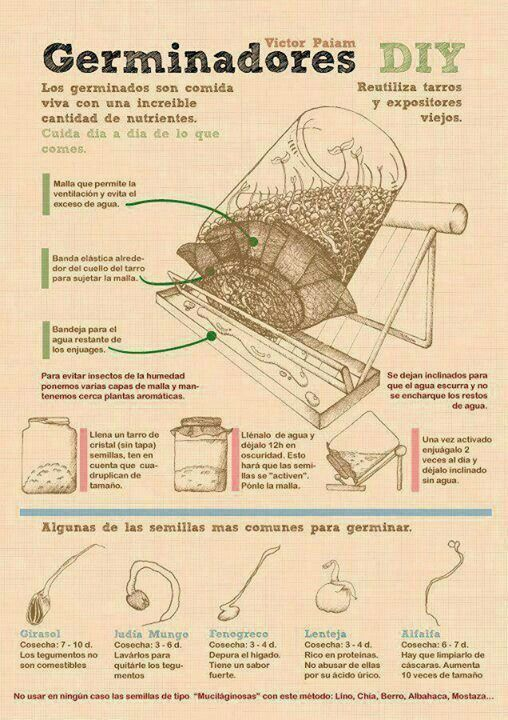 Como hacer germinados del método tradicional, es un poco más complicado. Pero el resultado el mismo :) Nos encanto el trabajo de VIctor Paiam, visiten su página www.victorpaiam.com