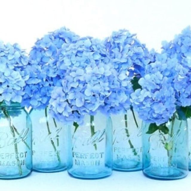 blue water, white flowers in mason jars