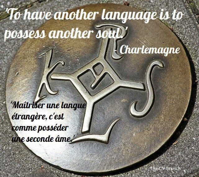 Foreign language #3 #cvbranch #cvwriter #language