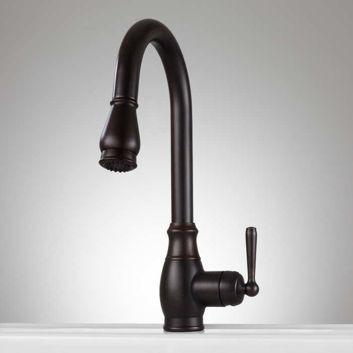 Withrow Single Hole Kitchen Faucet With Pull Down Spray