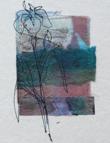 Cas Nolmes - Waterland Iris