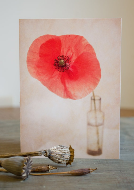 Blank greetings /notecard   Single Red Poppy in Vintage Glass Bottle by Paper Snapdragon, £2.00