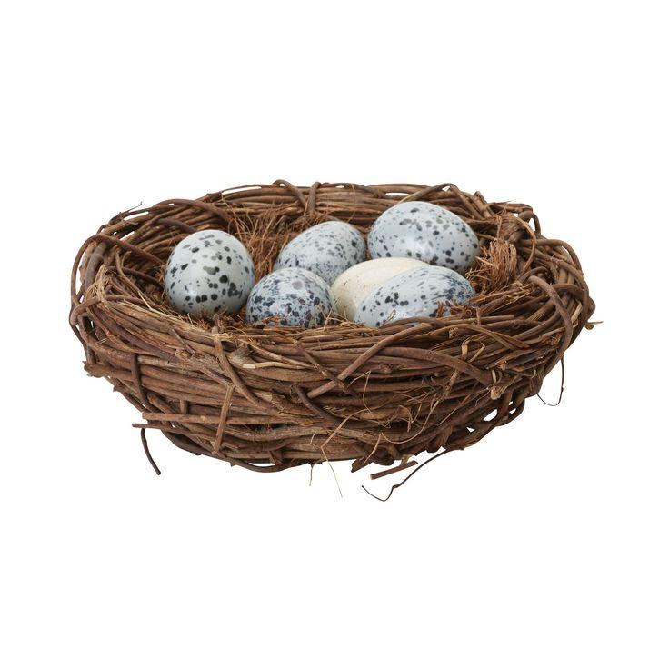 Song Thrush Nest in Nest