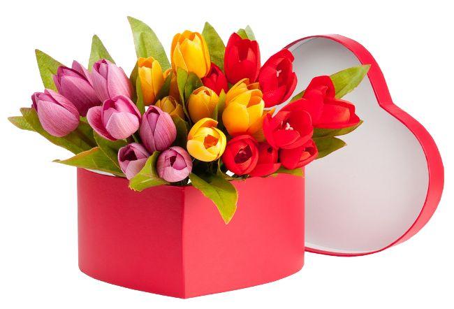 """Kiváló minőségű raszteres előfizetői """"tulipánok"""" A világon a digitális scrapbooking"""