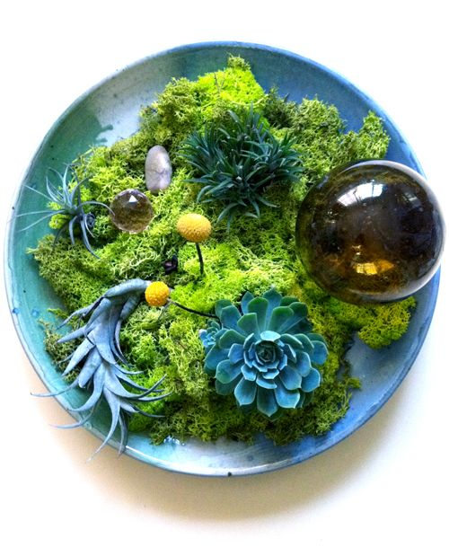 moss+succulents centerpiece (by justina blakeney)