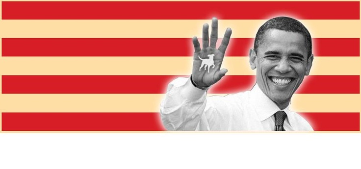 Tyksak lost to Obama - we salute both of them!