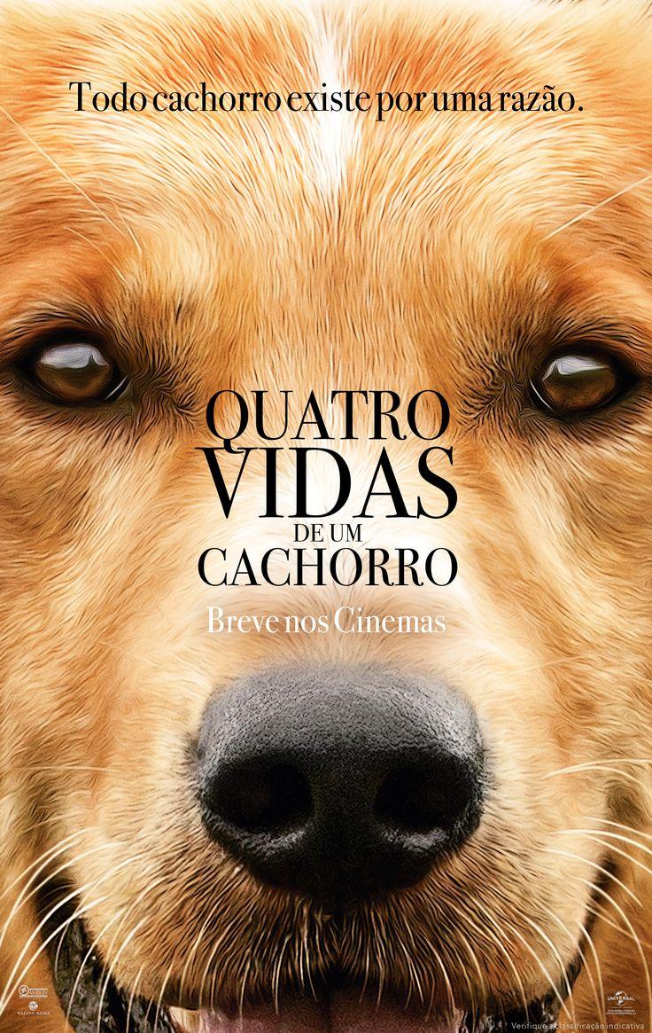 Cartaz de Quatro Vidas de um Cachorro, 26 de janeiro nos cinemas!