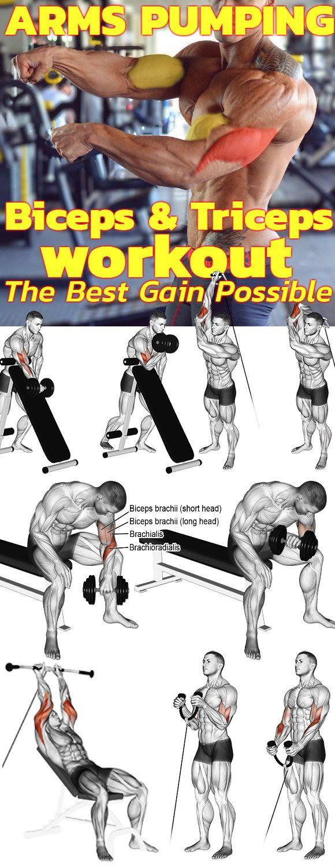 Suchen Sie die besten Pump-Arm-Übungen für großen, starken Bizeps und Trizeps?   – Gym Workout chart and Plans