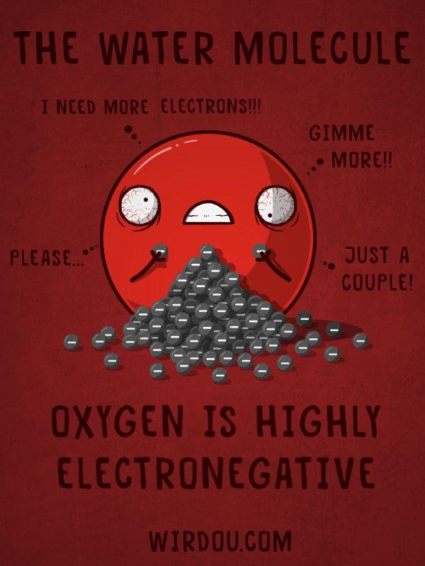 water oxygen electronegativity