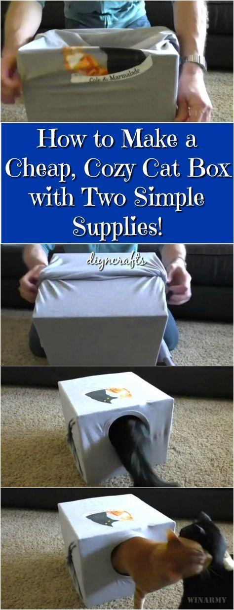 ¡Cómo hacer una caja de gato barata y acogedora con dos suministros simples!