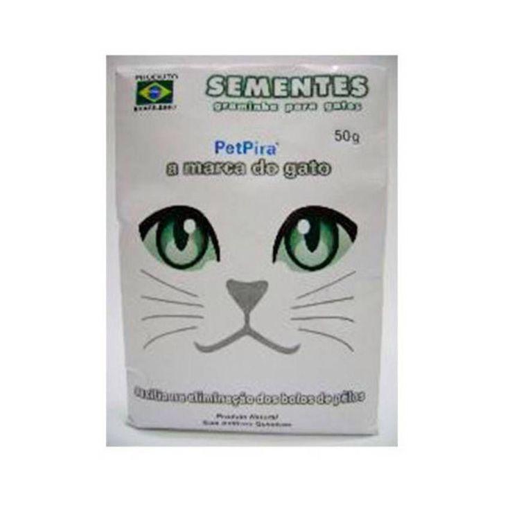 Sementes de aveia e milheto para serem plantadas, que darão origem à graminha para gatos, especial para a alimentação dos gatos, e que regula o trato intestinal e elimina bolas de pelos.