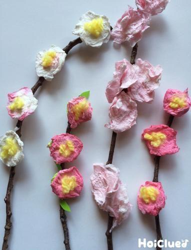 梅、桜、桃…春のお花をティッシュペーパーで作ってみよう! 周りがパッと明るくなりそうなお花は、ちょっとした飾りにももってこい♪ 春をたっぷり感じられる製作あそび。