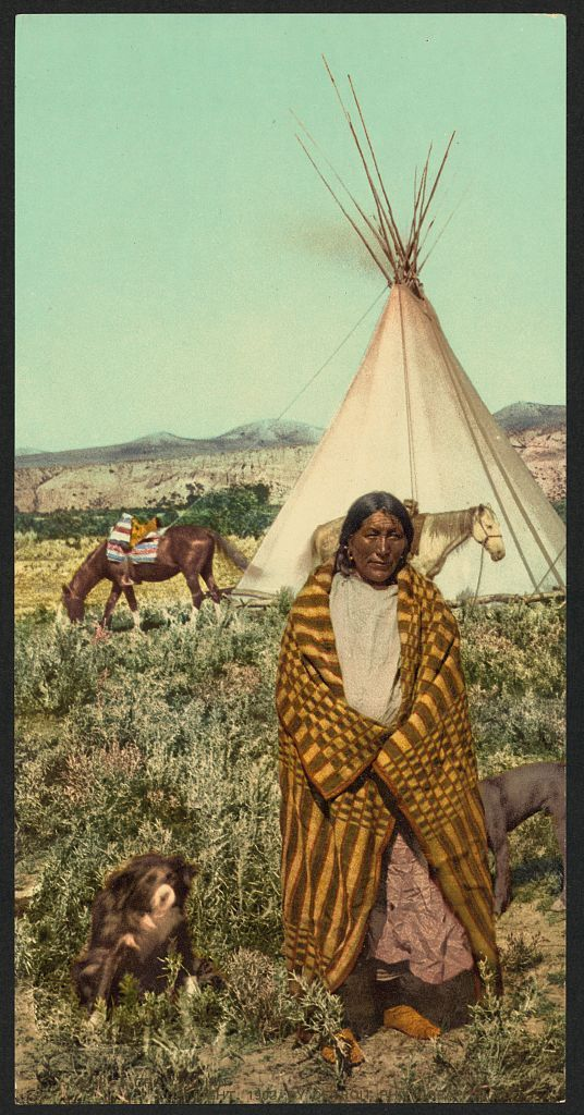 Image result for native american ledger art
