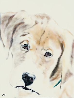 Boxador: aka Luka's First Pup Portrait; boxer/lab mix; Krisi Keley: On the Soul