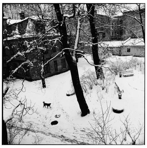 ©Борис Смелов. «Заснеженный двор. 1995» Посмотреть покрупнее!