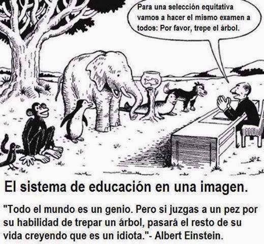 """Juzga a todos por igual - Todos sabemos que somos completamente diferentes y que tenemos habilidades únicas que compartimos con cierta cantidad de personas, el sistema educativo juzga a todos por igual, no importa si eres bueno en algo o no, tendrás que hacerlo y de no hacerlo bien serás tachado como un bueno para nada que no sabe hacer nada bien las cosas, Albert Einstein dijo una vez: """"Si juzgas a un pez por su habilidad para trepar un árbol, este vivirá toda la vida creyendo que es…"""