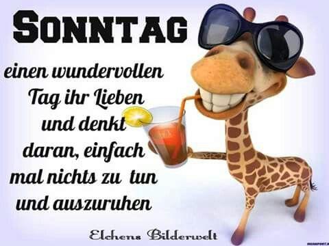 Sprueche Liebex3 Zitate Wünsche Euch Einen Schönen Sonntag
