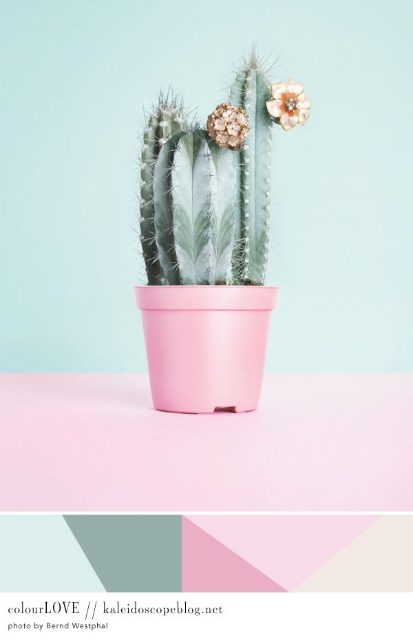 Colour Love // 51 [pastel, pink, green, sage, mint, cotton candy pink, light pink, light green, cactus, pot, pot plant, gold flowers, cluster, neutral, taupe, cream, diamonds, brooches, colour love, color love, colourlove, colorlove] Kaleidoscope Blog