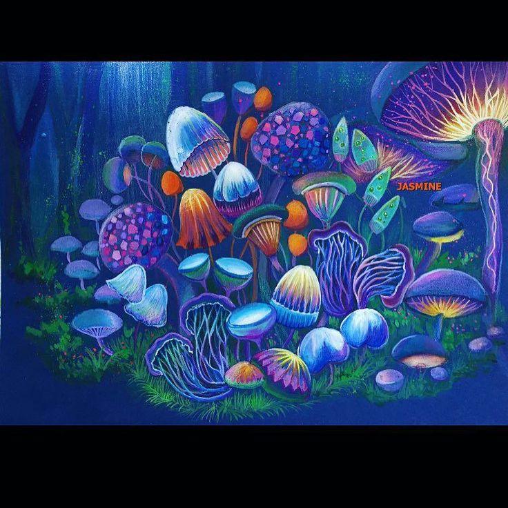 Coloring SecretGarden Colouringbooks Colourpainting Artecomoterapia Mushrooms Milliemarotta Shadyas Regrann Reinoanimal Animalkingdom Art