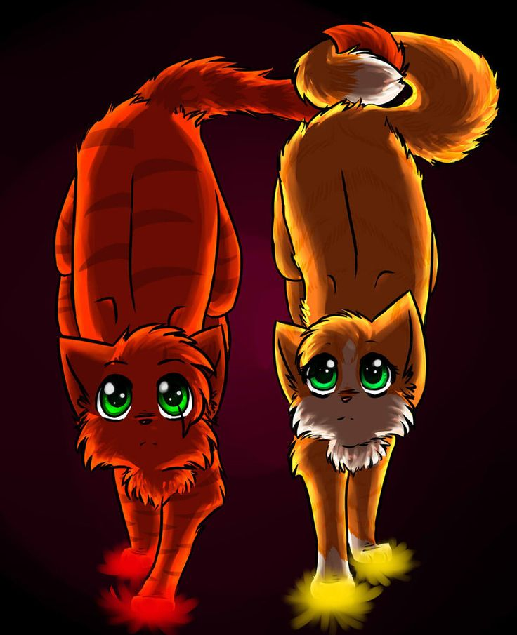 The Blazing Star Warriors: Firestar And Sandstorm By Fuzzyfire932 On DeviantART