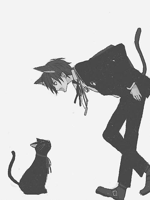 Смотреть аниме про парень кот