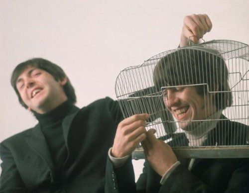 The Beatles' cage
