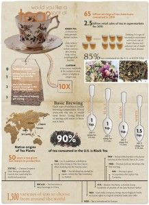 All You Need to Know About Tea