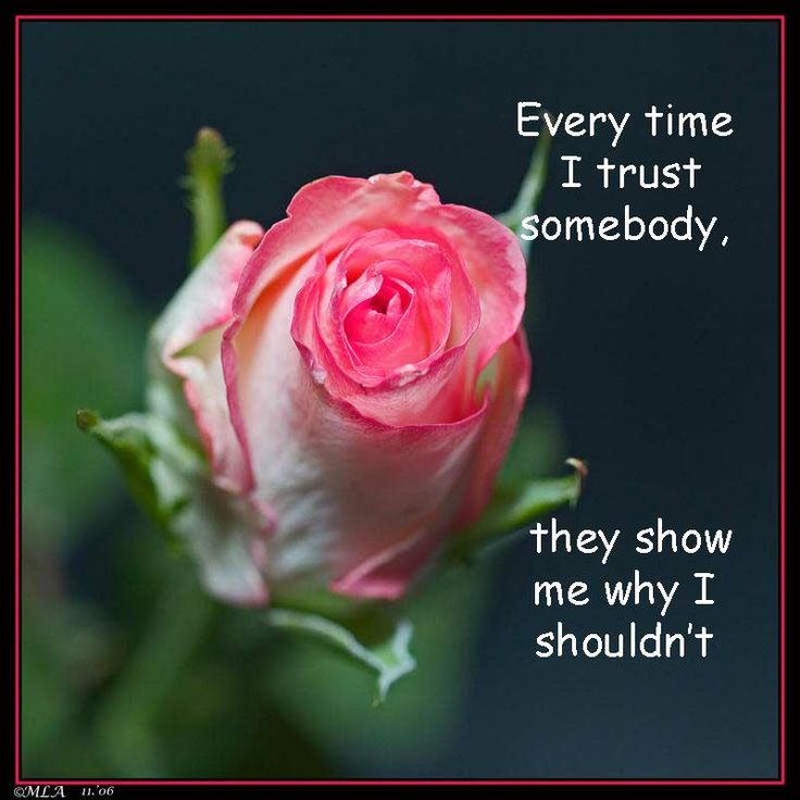 trust / quotes & funny things/SylviaDros
