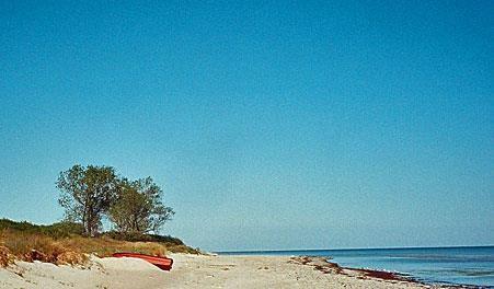 Elkenøre Strand   Visitlolland-falster