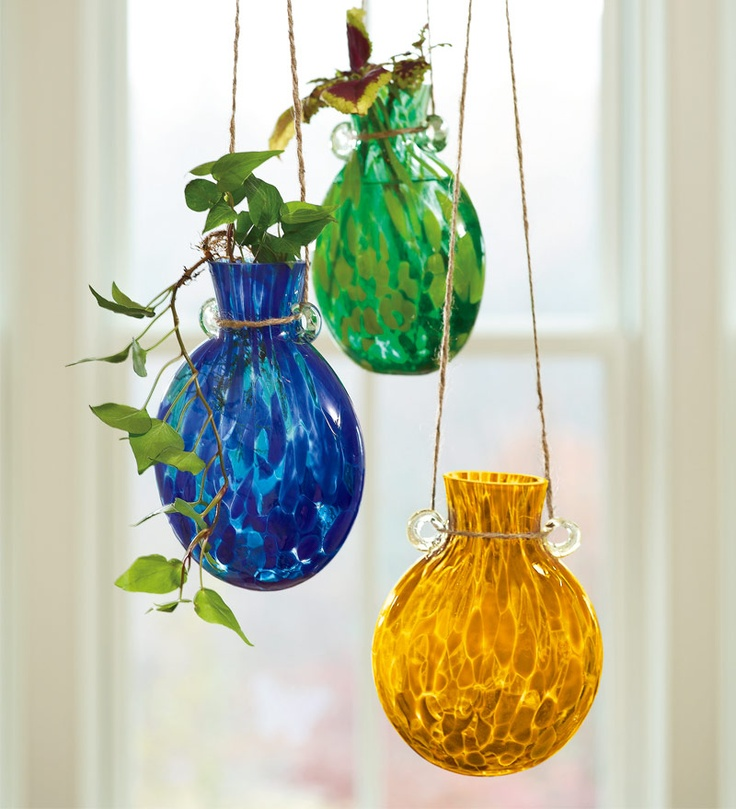 14 Best Images About Plant Rooters On Pinterest Bottle Vases And Vase