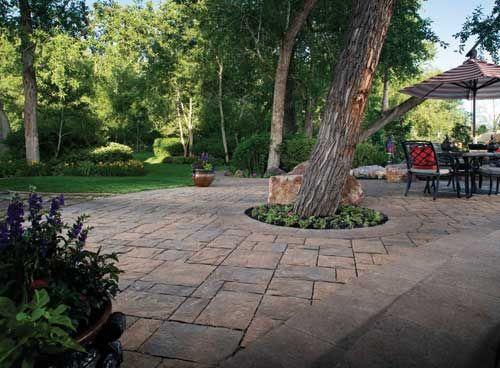 42 best home landscape images on pinterest backyard. Black Bedroom Furniture Sets. Home Design Ideas