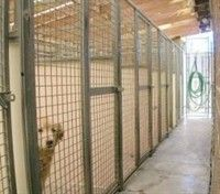 Boarding Kennels For Sale  http://firstbuysell.com/business_for_sale_detail/Boarding-Kennels-For-Sale-6307.html