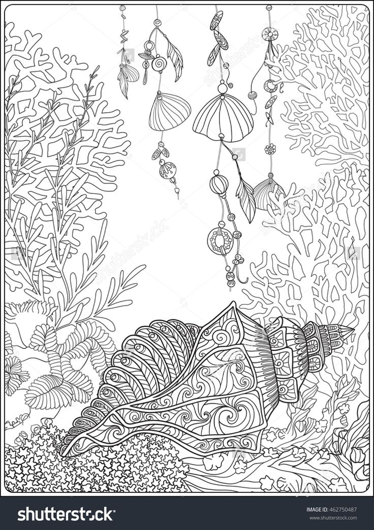 coral fish and sea shells coloring page for adults shutterstock 462750487