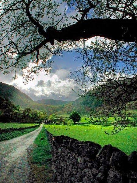 Country Lane, Cumbria, England