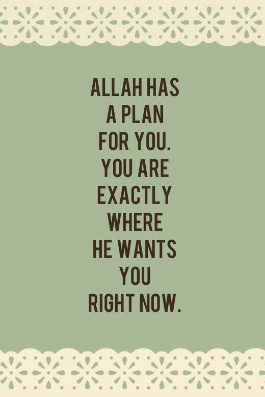 Ya Allah.. I know you test me. I hope i pass your test , and get closer to you each and every day. I know you have better plan for me. :')