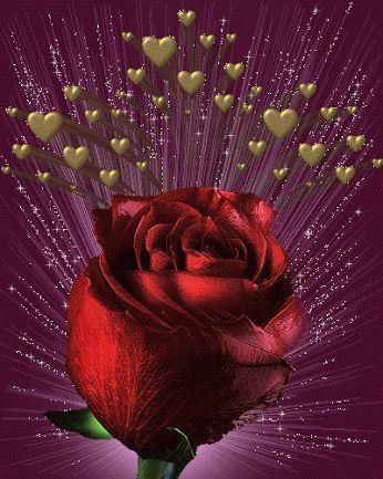 Imagen de amor de corazones y rosas con brillo y movimiento linda rosa brillante