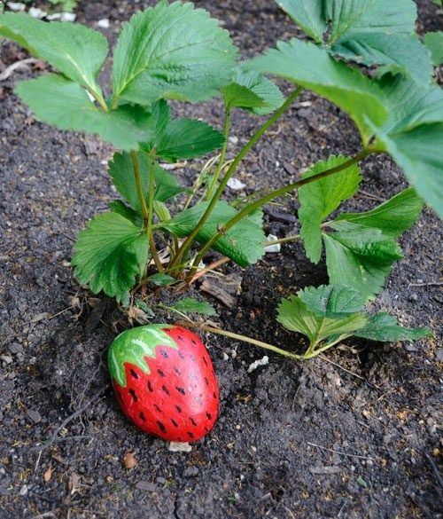Strawberry Protectors...rocks painted like strawberries to condition birds to leave your strawberries alone!