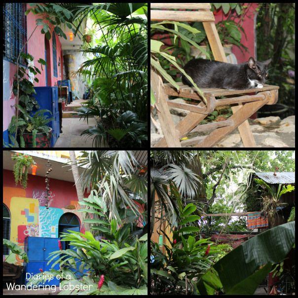 Los Amigos Hostel - Flores, Guatemala | Diaries of a Wandering Lobster