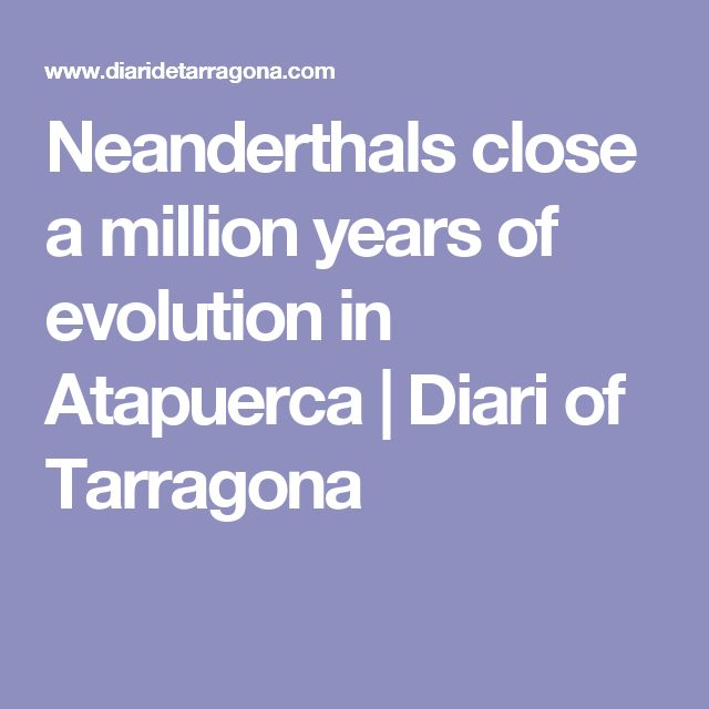 Neanderthals close a million years of evolution in Atapuerca |  Diari of Tarragona