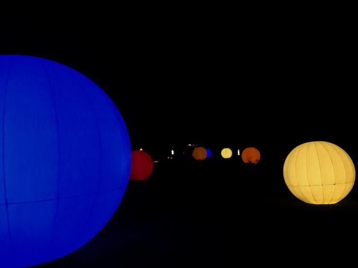 Berlin Botanic Garden Super Glow Bowls