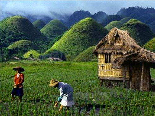 This is the Chocolate Hills in Bohol - AND where we got engaged!!