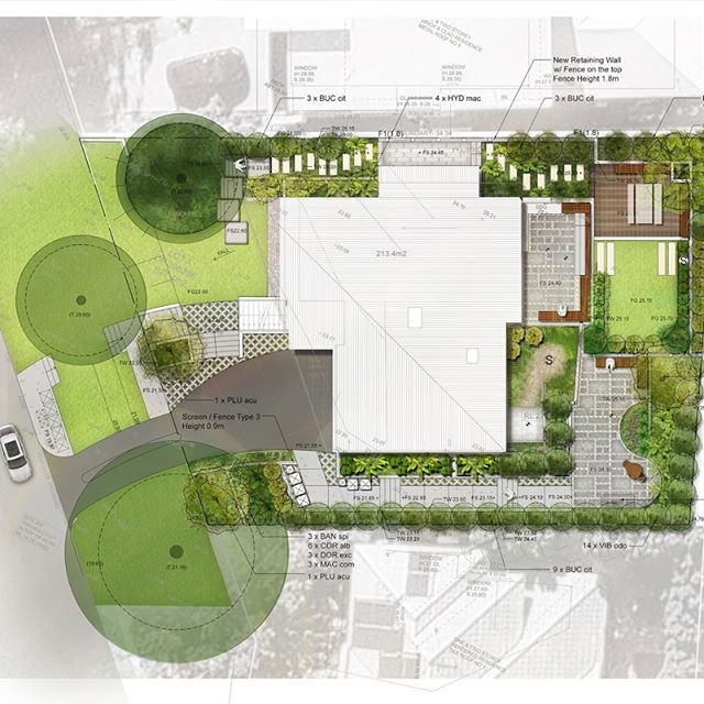 P R O J E C T - Graphic plan of our landscape design for a Mona Vale residential project with relaxed rooftop garden (and an interior vertical garden).