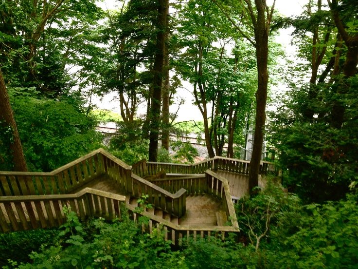 1001 Steps near Crescent Beach in Surrey, BC One of my favorite spots to take the boys!