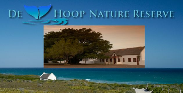 Win 1 of 2 Mid-week Breakaways for 6 at De Hoop Nature Reserve in South Africa's Western Cape province. The prize includes a guided marine walk for six people, with the compliments of The De Hoop Collection. http://www.tourismtattler.com/competition/