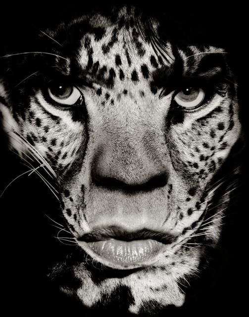 Mick-Jagger © Albert-Watson  1992