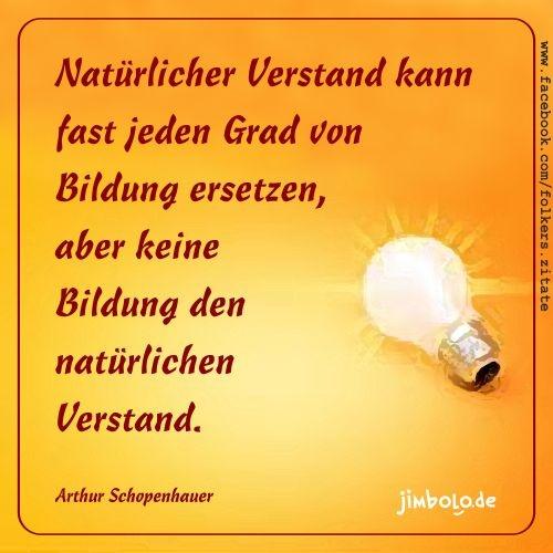 Natürlicher Verstand kann fast jeden Grad von Bildung ersetzen, aber keine Bildung den natürlichen Verstand.  (Arthur Schopenhauer)