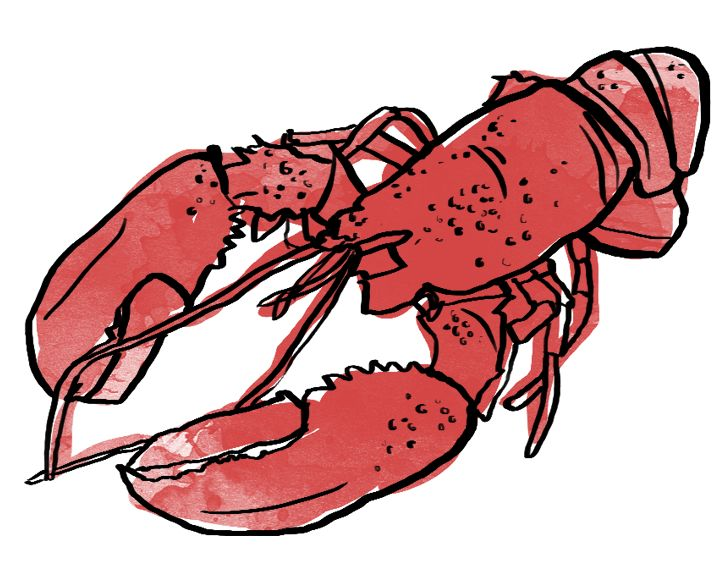 red lobster case synopsis 66 reviews of red lobster went there last night in any case, the hostess handled business info summary today.