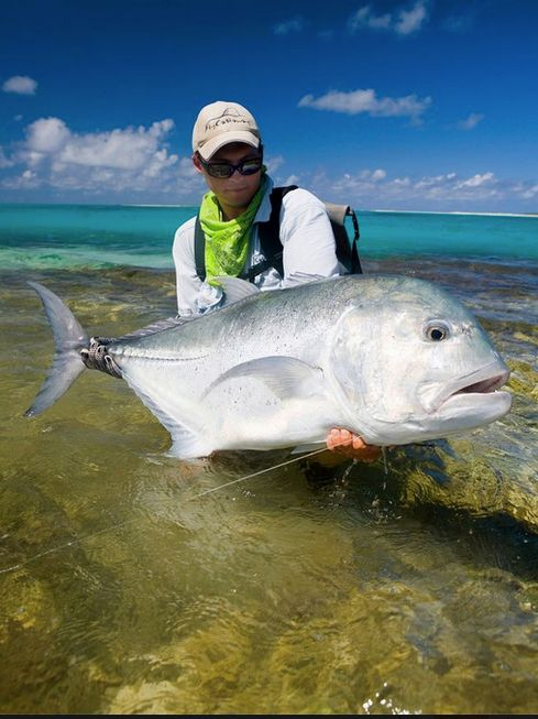 86 best images about saltwater fishing on pinterest mahi for Florida saltwater fishing
