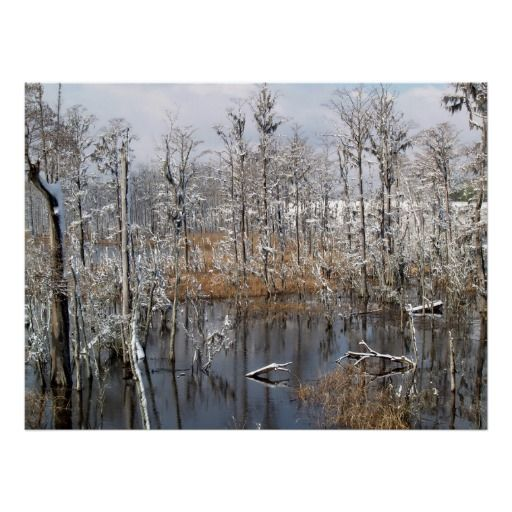 Winter Beauty Posters