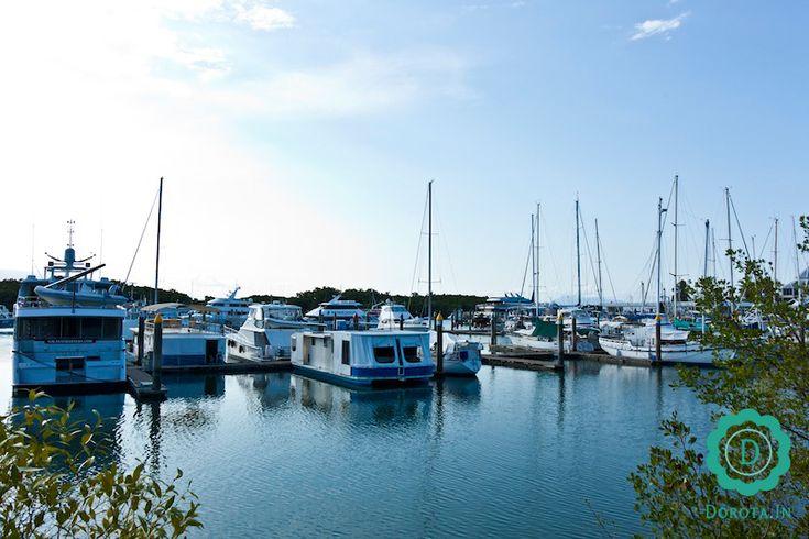 Port Douglas - miejscowość wypoczynkowa na wschodnim wybrzeżu Australii.  #travel #podróże #australia #portdouglas